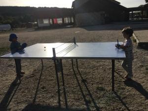 ping pong baby karaté