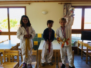 Podium coupe du stage babies stage karate