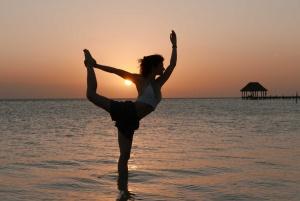 Sylvie Cieren Asana Yoga Vinyasa