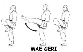 Mae Geri