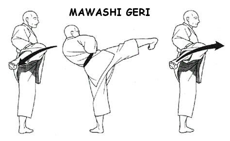 Mawashi Geri