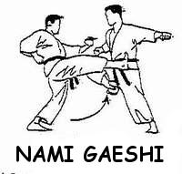 Nami Gaeshi