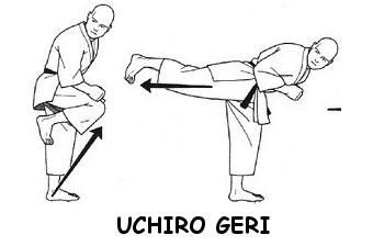 Ushiro Geri