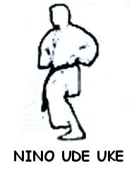 Nino Ude Uke