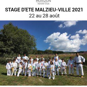 affiche stage karaté 2021 website